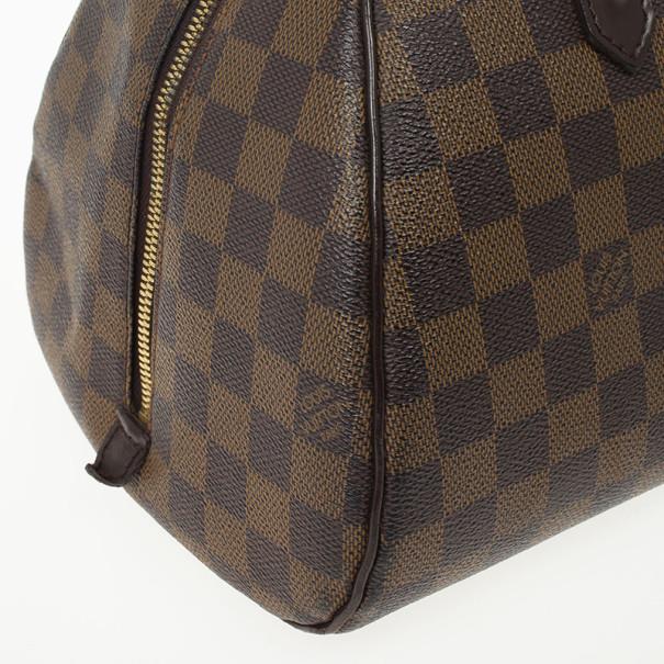 Louis Vuitton Damier Ebene Canvas Ribera MM Bag